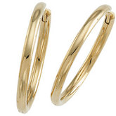 Gold Fashion Hinged Earrings