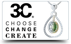 3C - Choose Change Create