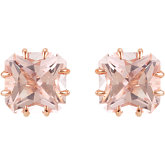 Genuine Morganite Earrings