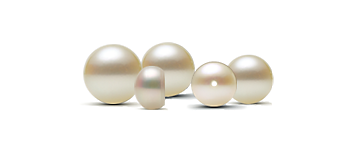 Cultured Seed Pearls