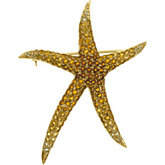 Multicolor Gemstone Starfish Brooch/Pendant