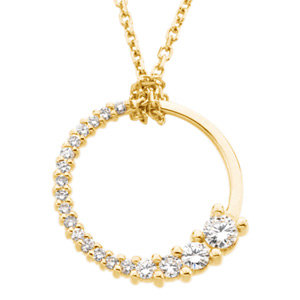 Journey Diamond Cirlce Necklace