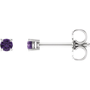 14kt White  .5mm Round Amethyst Earrings