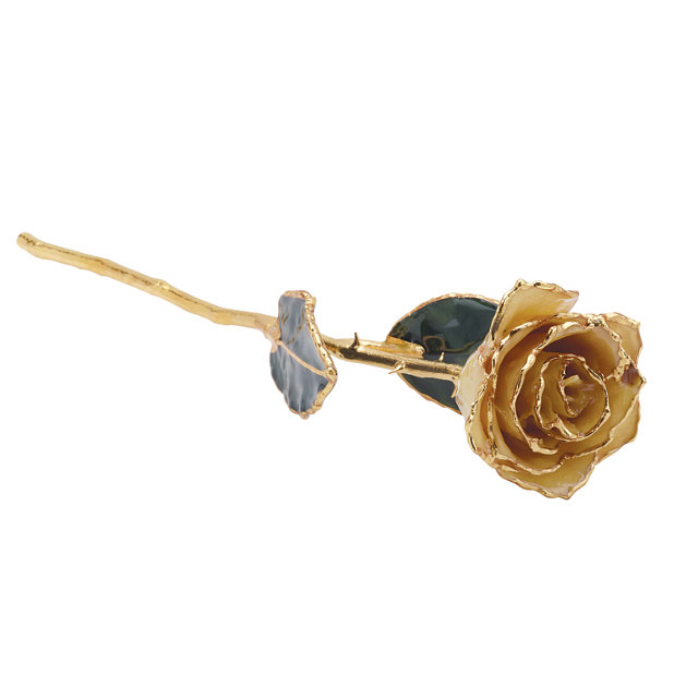 Lacquered White Rose With Gold Trim