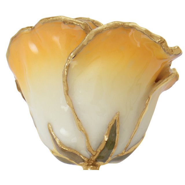 Lacquered Cream Yellow Rose with Gold Trim