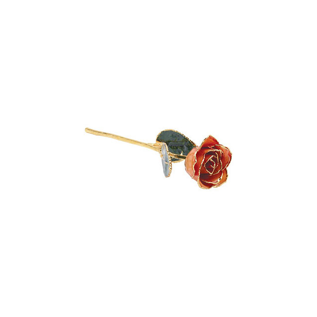 Lacquered Orange Rose With Gold Trim