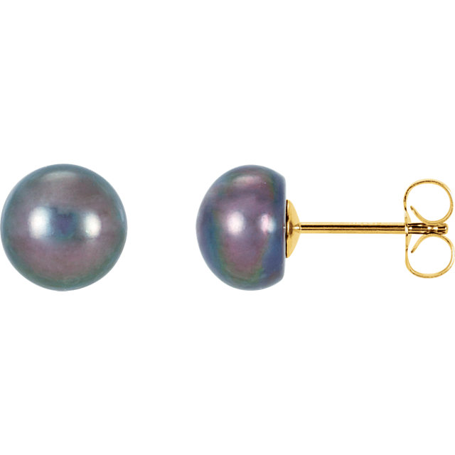 14K Yellow Freshwater Cultured Black Button Pearl Earrings