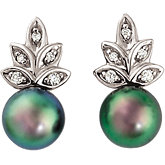 Akoya Cultured Pearl & Diamond Earrings
