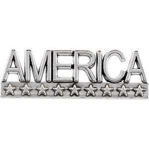 Brooche, Pin , AMERICA Lapel Pin