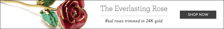 The Everlasting Rose | Real roses trimmed in 24K gold